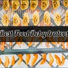 Best Food Dehydrators for Every Budget 2018 (Reviews & Guides)