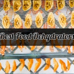 Best Food Dehydrators for Every Budget 2018 – Reviews & Buying Guides