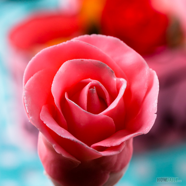 Pink chocolate rose